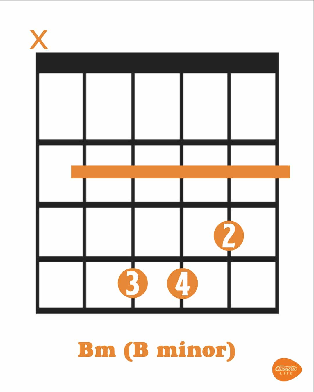 Bm Chord For Beginners Exercises And Easier Versions Acoustic Life